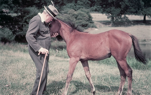 WSC with a thoroughbred colt, photographed for Life magazine, 1950s.